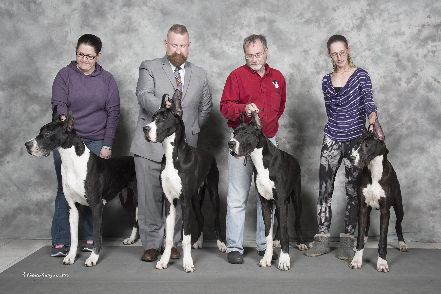 family of mantle great danes