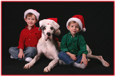 Great Dane & kids in santa hats