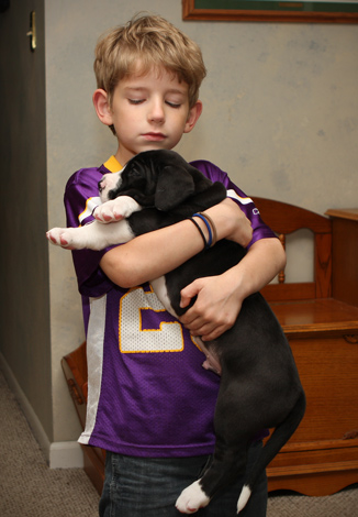 child with dane puppy